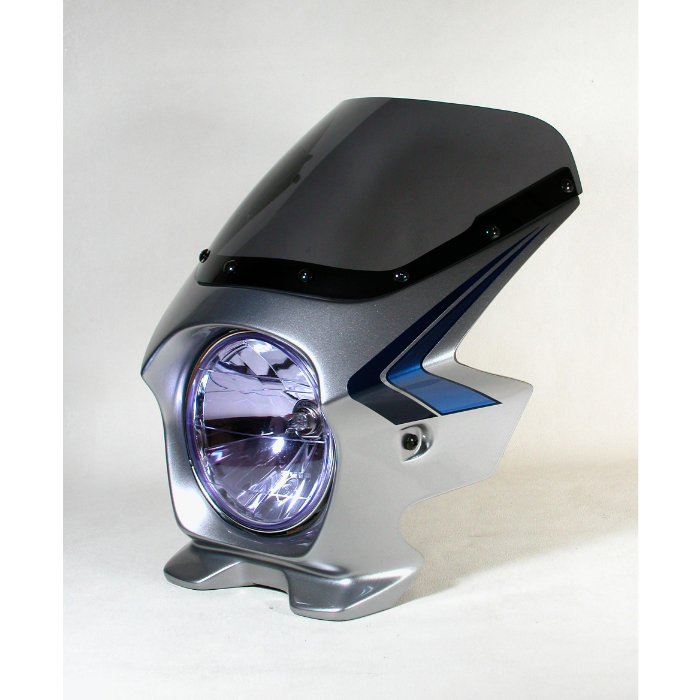 N-PROJECT BLUSTERⅡ(ブラスター2) CB750 '07 デジタルSVストライプ STDスクリーン