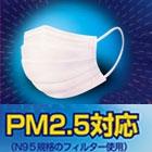 ERA Japan 大気汚染予防マスク レギュラー 5枚入り(使い捨て)