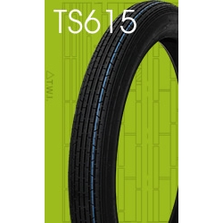 TIMSUN TS615 2.50-17 F 38L 4PR WT