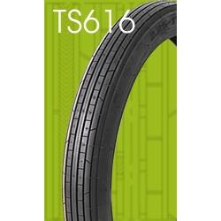 TIMSUN TS616 2.25-17 F 33L 4PR WT