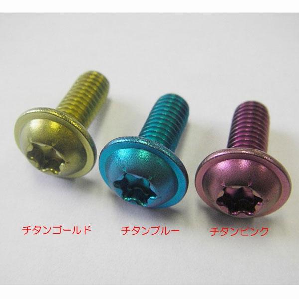 ADIO Bチタン合金製 ナンバー用ボルト