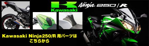 NINJA250R(ニンジャ250R)