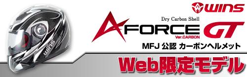 WINS JAPAN A-FORCE GT 【WEB限定カラー】カーボン/SVライン