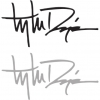 Troy Lee Designs SIGNATURE LOGO 10
