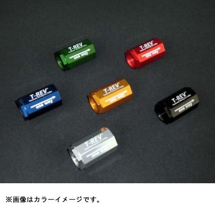 寺本自動車商会 T-REV ZRX1200DAEG専用 SPフルキット