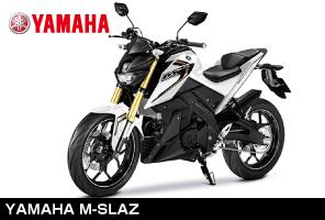 B-Renta試乗車両YAMAHA M-SLAZ